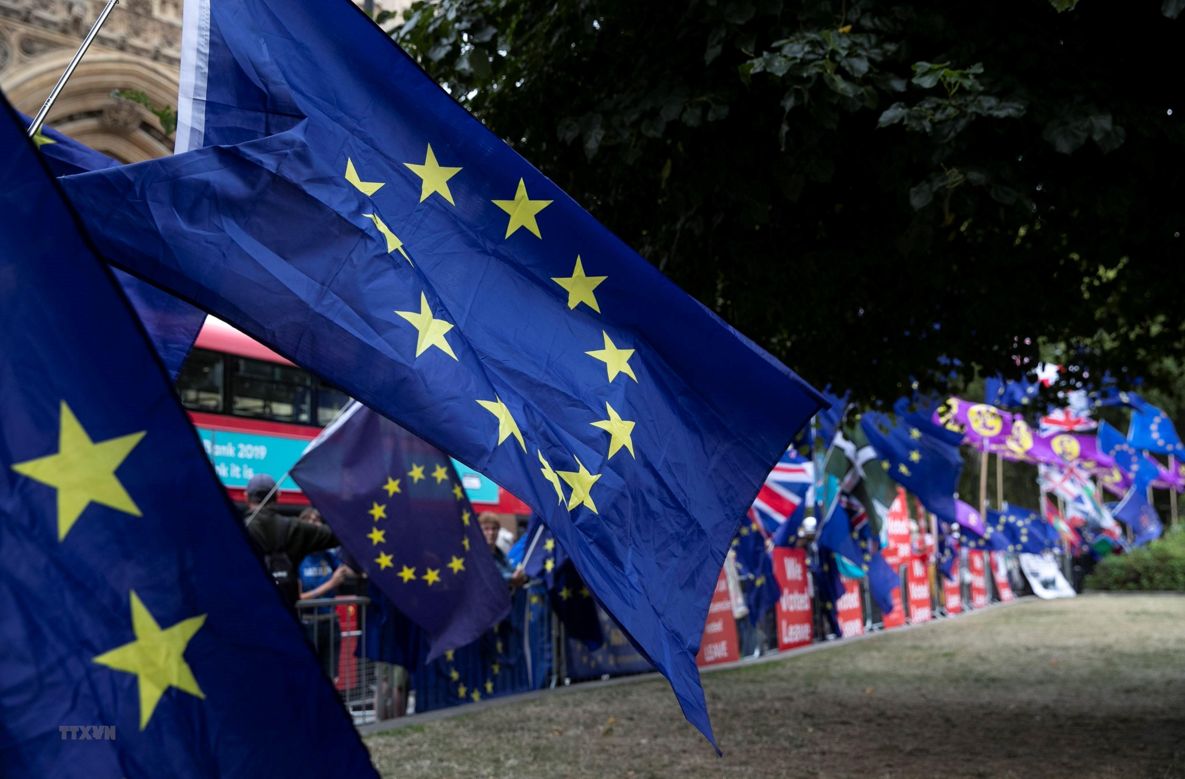 Người biểu tình Anh tuần hành về vấn đề Brexit bên ngoài Hạ viện ở thủ đô London, ngày 3/9/2019. (Nguồn: THX/TTXVN)