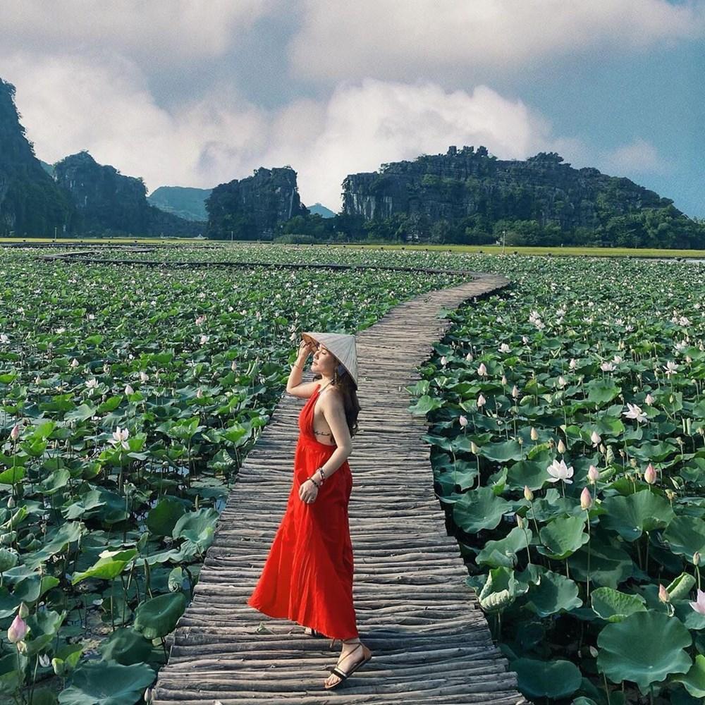 [Photo] Kham pha dam sen duoc menh danh dep nhat Viet Nam hinh anh 5