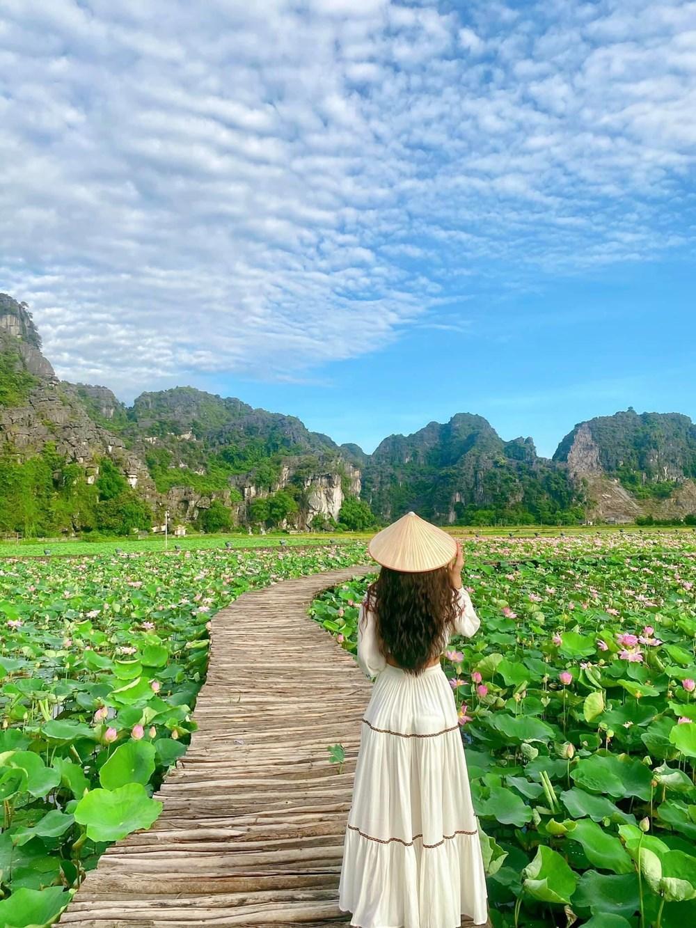 [Photo] Kham pha dam sen duoc menh danh dep nhat Viet Nam hinh anh 7