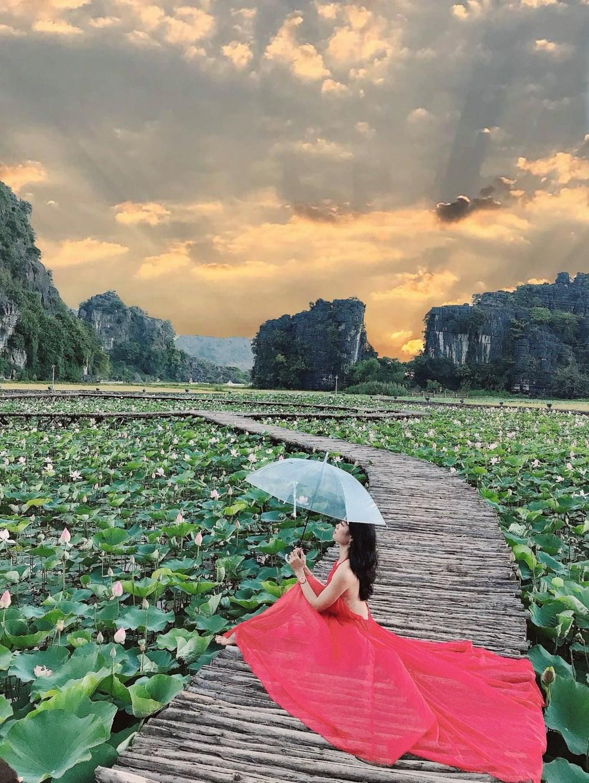 [Photo] Kham pha dam sen duoc menh danh dep nhat Viet Nam hinh anh 8