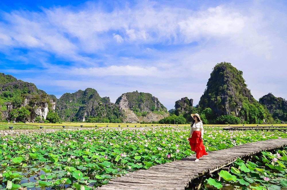 [Photo] Kham pha dam sen duoc menh danh dep nhat Viet Nam hinh anh 1