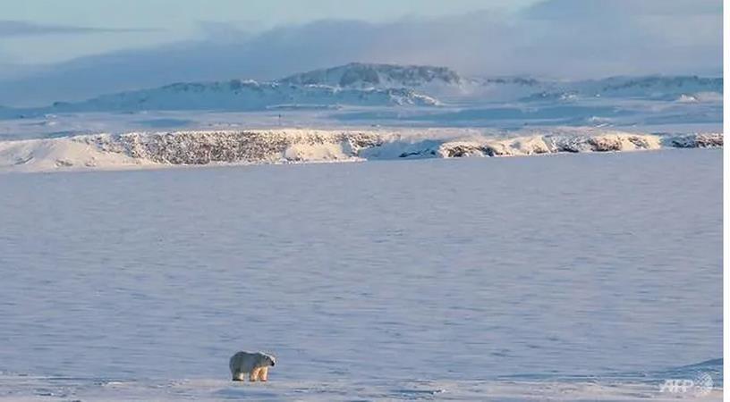 Đoàn thám hiểm phát hiện 5 hòn đảo mới ở Bắc Cực nhờ băng tan