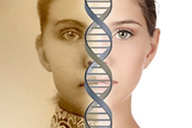 Phát hiện các mã gene mới ngăn chặn quá trình lão hóa