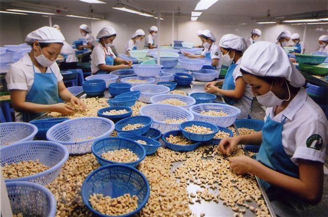 Xuất siêu nông, lâm, thủy sản tăng gần 49% trong quý đầu năm - 1