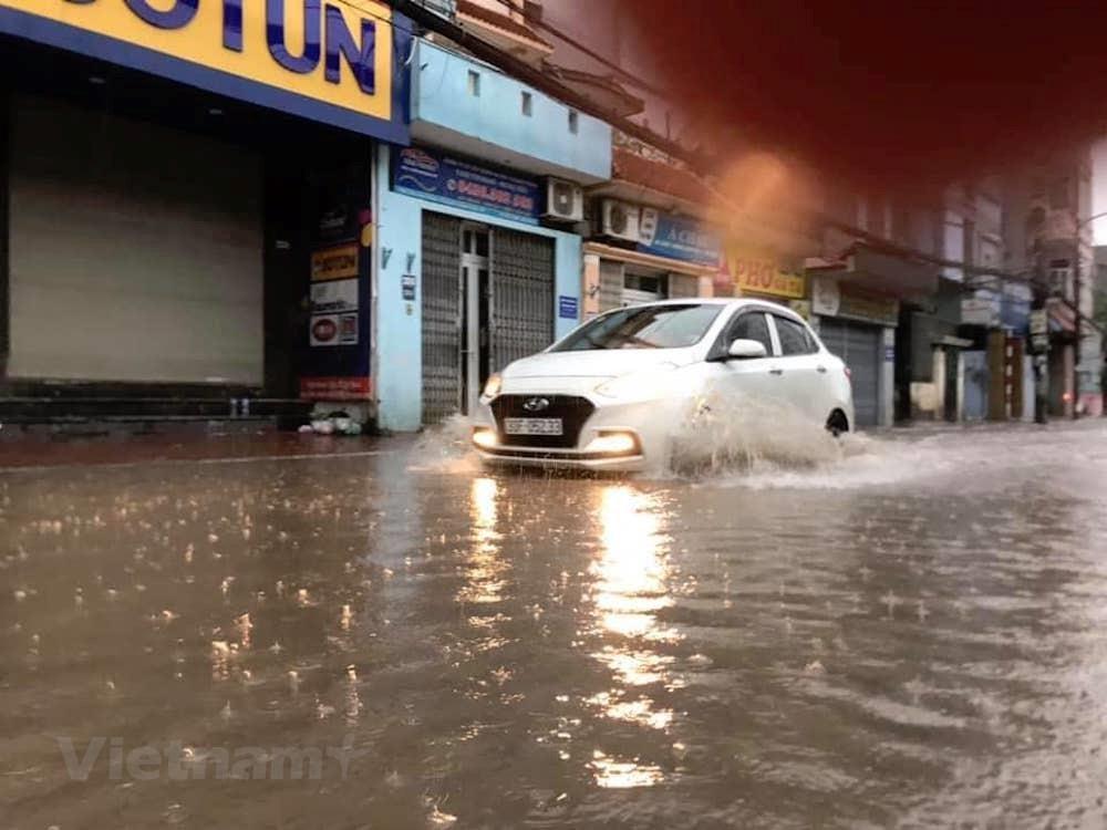 [ẢNH] Cây cối bị 'quật đổ' tại Hà Nội do ảnh hưởng của bão số 3 - 3