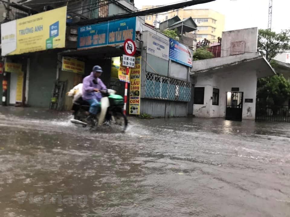 [ẢNH] Cây cối bị 'quật đổ' tại Hà Nội do ảnh hưởng của bão số 3 - 4