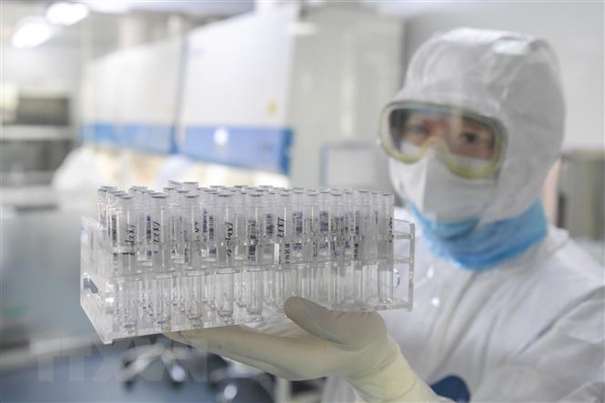Vaccin phòng bệnh Covid-19 đã đạt thành công bước đầu