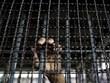 Nổi loạn tại nhà tù ở Tajikistan làm hơn 20 người thiệt mạng