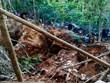 Nicaragua giải cứu các công nhân trong vụ sập mỏ khai thác vàng