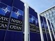 Thành viên NATO tập trận chỉ huy mô phỏng trên máy tính tại Gruzia