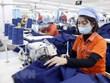 Kim ngạch xuất nhập khẩu tiến gần tới mốc kỷ lục 600 tỷ USD