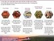 [Infographics] 5 món đặc sản nhất định phải nếm thử khi về Cà Mau