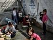 Hy Lạp mạnh tay giải quyết vấn đề người di cư tại thủ đô Athens