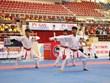 Gần 300 vận động viên tham gia giải vô địch karate quốc gia lần 29