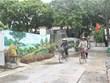 [Video] Những con đường bích họa tại Cố đô Hoa Lư