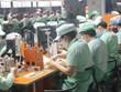 [Video] Bắc Ninh cho phép đón lao động ngoại tỉnh đến làm việc