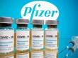 Indonesia đàm phán hợp tác sản xuất vắcxin ngừa COVID-19 với Pfizer