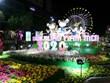Sắc thái văn hóa hội tụ trên Đường hoa Nguyễn Huệ Xuân Canh Tý 2020
