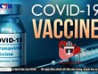 """[Audio] Cảnh giác với những """"lời mời"""" tiêm vaccine COVID-19 trên mạng"""