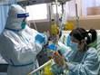 Dịch viêm phổi: Trung Quốc cho phép WHO cử chuyên gia đến nghiên cứu