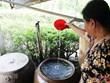 Hơn 30 triệu người dân nông thôn chưa được sử dụng nước hợp vệ sinh