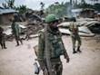 Việt Nam sẵn sàng hỗ trợ cho các quốc gia hậu xung đột ở châu Phi