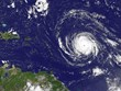 Bão Irma mạnh lên cấp nguy hiểm, tiến về miền Đông Puerto Rico