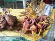 [Video] Loại bỏ buôn bán động vật hoang dã để chống COVID-19