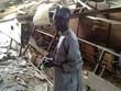 Các nước Tây Phi lập lực lượng đa quốc gia chống Boko Haram