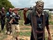 Niger: Phiến quân Boko Haram tấn công gây nhiều thương vong