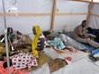 Dịch tả tái bùng phát tại Cameroon, gần 50 người thiệt mạng