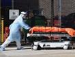 Mỹ ghi nhận số ca tử vong kỷ lục trong vòng 24 giờ qua