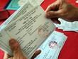 [Video] Phát thẻ cử tri trong điều kiện phòng dịch COVID-19