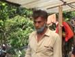 [Video] Truy cứu trách nhiệm trong vụ trồng cần sa giữa thủ đô Hà Nội