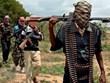 Cộng hòa Chad: 18 nông dân bị sát hại, nhiều phụ nữ bị bắt cóc