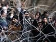 Yêu cầu xin tị nạn vào châu Âu giảm mạnh do đại dịch COVID-19
