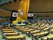 Việt Nam kêu gọi các nước hành động quyết liệt bảo vệ đa dạng sinh học