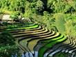 [Photo] Vẻ đẹp ruộng bậc thang mùa nước đổ tại xã vùng cao Y Tý