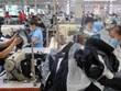 Phú Yên: Tìm kế sinh nhai cho người dân về quê tránh dịch
