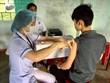 Bộ Y tế: 81% trường hợp mắc bệnh bạch hầu do không tiêm chủng