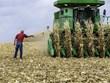 Phái đoàn Trung Quốc bất ngờ hủy chuyến thăm các trang trại của Mỹ