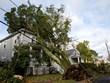 Mỹ: Gió lốc khiến 500.000 người dân nhiều nơi rơi vào cảnh mất điện
