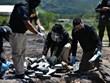 Honduras thu giữ 900kg cocaine được giấu trên tàu đánh cá