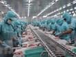 Cảnh báo doanh nghiệp Việt Nam khi giao dịch tại thị trường UAE