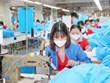 Áp thuế chống bán phá giá đối với sợi dài làm từ polyester nhập khẩu