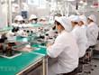 Tuyển dụng ngành điện tử và dệt may miền Bắc sẽ tăng trong quý 4