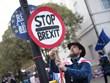 EU nhất trí hoãn Brexit tới 12/4 nếu thỏa thuận với châu Âu bị bác bỏ