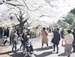 Nhật yêu cầu du khách từ Đông Nam Á, Trung Đông, châu Phi tự cách ly
