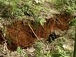 Nguy cơ xảy ra lũ quét, sạt lở đất tại các tỉnh vùng núi phía Bắc