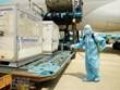Chi tiết về vắcxin COVID-19 đầu tiên về Việt Nam và 11 nhóm ưu tiên